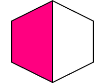 Is One-Half of the Shape Colored?