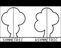 Symmetrical or Asymmetrical? #2